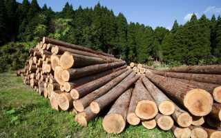 Как получить лесобилет на строительство дома