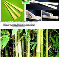 Баня бамбуковый веник