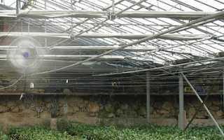 Система туманообразования для теплиц