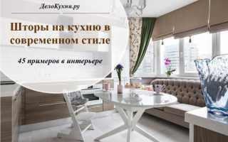 Кухонные занавески фото современный стиль